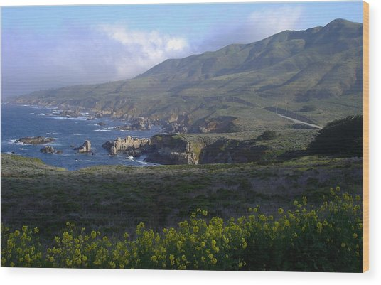 California Coast Wood Print by Cyndi Combs