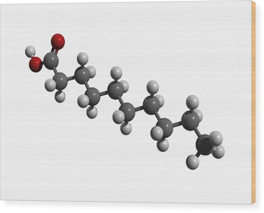 Capric Acid Molecule Wood Print by Friedrich Saurer