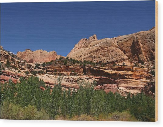 Captial Reef Wood Print by Southern Utah  Photography