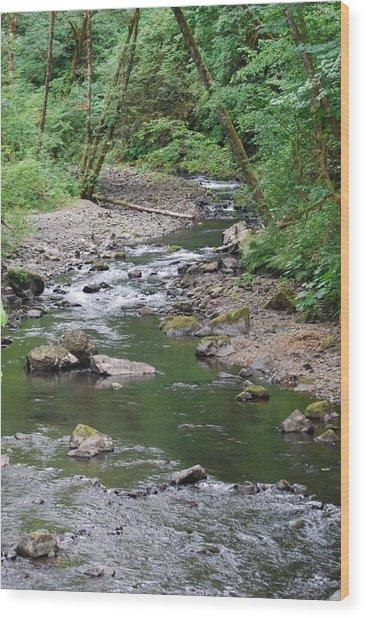 Cedar Creek Wood Print