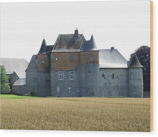 Chateau Fort De Feluy Belgium Wood Print