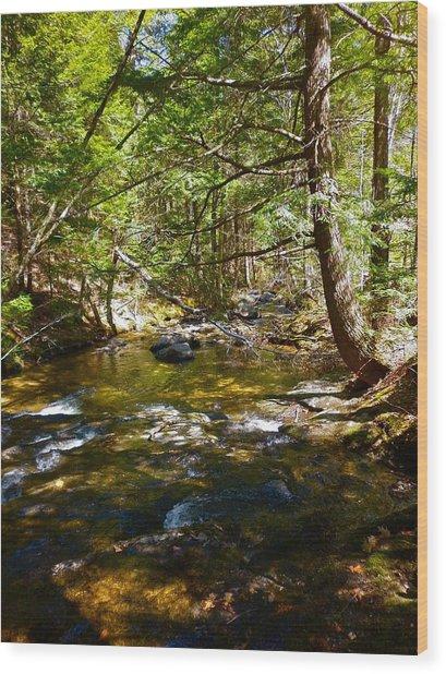 Childs Brook 6 Wood Print by George Ramos