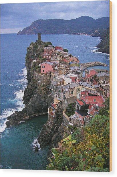 Cinque Terre Italy Fine Art Print Wood Print by Ian Stevenson