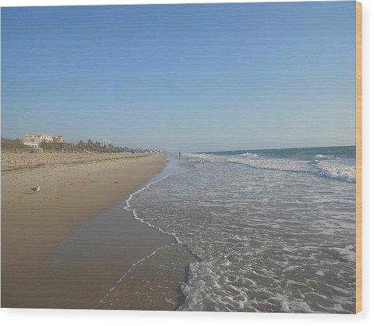Coastal Colors Wood Print by Sheila Silverstein