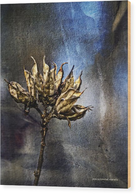Dead End Wood Print by Jessica Manelis