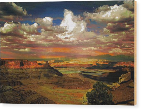 Dead Horse Point Canyon Wood Print