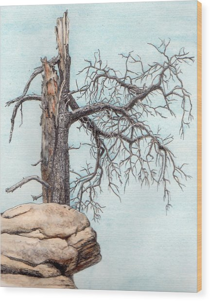 Dead Tree Wood Print by Inger Hutton