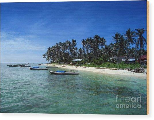 Derawan Island Wood Print by Antoni Halim