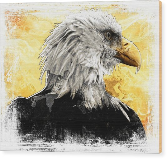 Eagle 6 Wood Print by Carrie OBrien Sibley