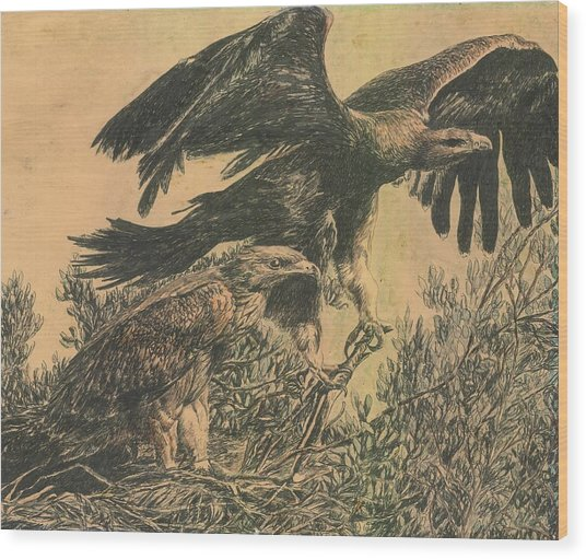Eagle's Roost Wood Print