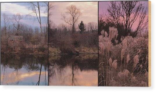 Fading Light Wood Print by Christy Woods