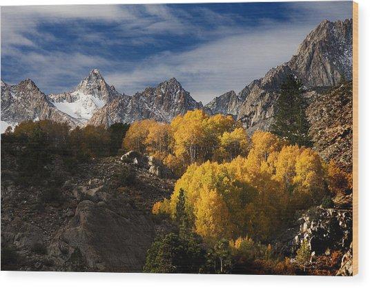 Fall Colors Wood Print