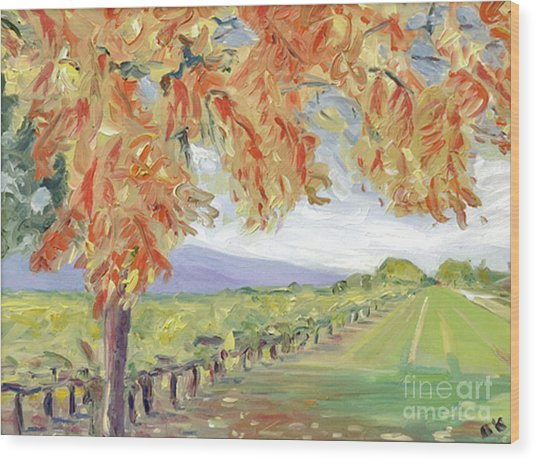 Fall In Napa Valley Wood Print