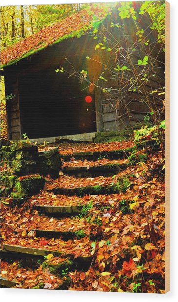 fall time in Ithaca New York.  Wood Print