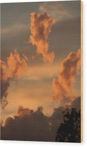 Fiery Floaters Wood Print