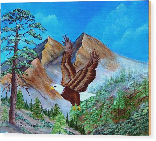 Freedom Flight Wood Print
