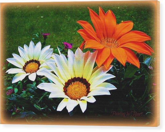 Garden Daisies Wood Print