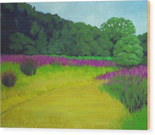 Golden  Meadow Wood Print by Robert Rohrich