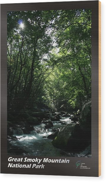 Great Smoky Mountains Np 007 Wood Print by Charles Fox