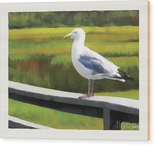 Gull One Wood Print
