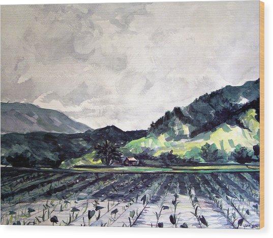 Hanalei Valley Wood Print by Jon Shepodd