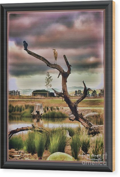 Hdr Wetlands Wood Print