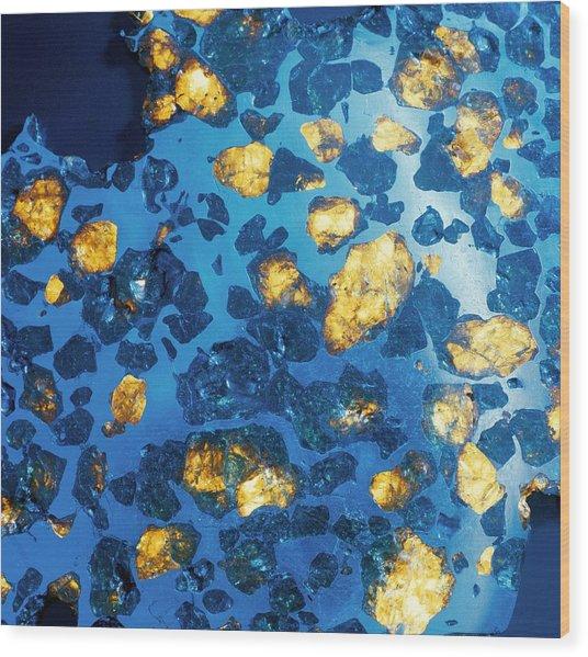 Imilac Meteorite Sample Wood Print by Detlev Van Ravenswaay