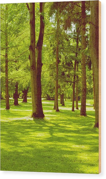 In The Park Wood Print by Design Windmill