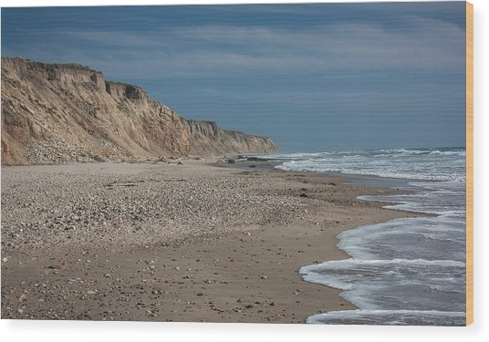Jalama Beach Wood Print by Ken Wolter