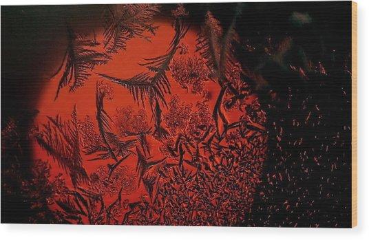 Japan Sun Wood Print