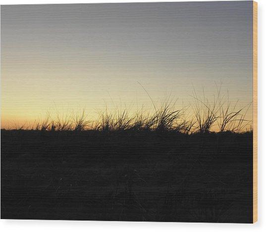 Just A Touch Wood Print by Kim Galluzzo Wozniak