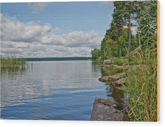 Lake Seliger Wood Print