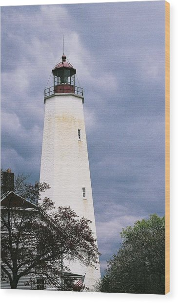 Lighthouse At Sandy Hook Wood Print by William Walker