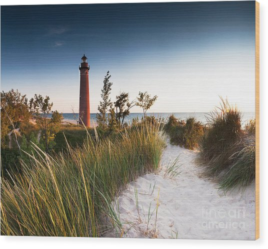 Little Sable Point Light Station Wood Print