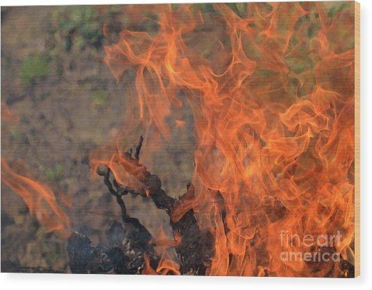 Log Fire And Flames Wood Print by Sami Sarkis