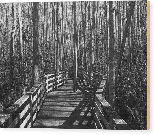 Lone Warrior Wood Print
