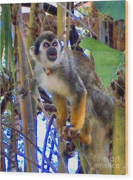 Monkeyshines Wood Print