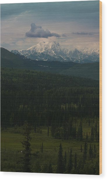Mount Hunter Wood Print