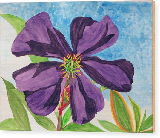 Our Very Bold Tibouchina Wood Print