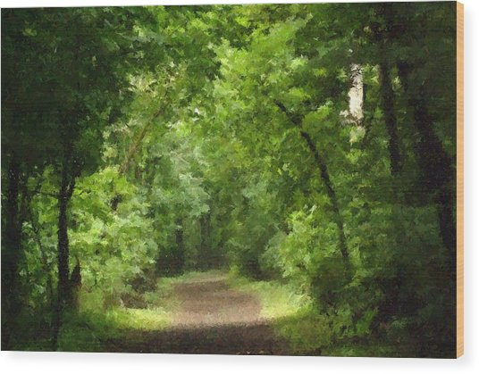 Path To Serenity Wood Print by Shellie and Steve Hill