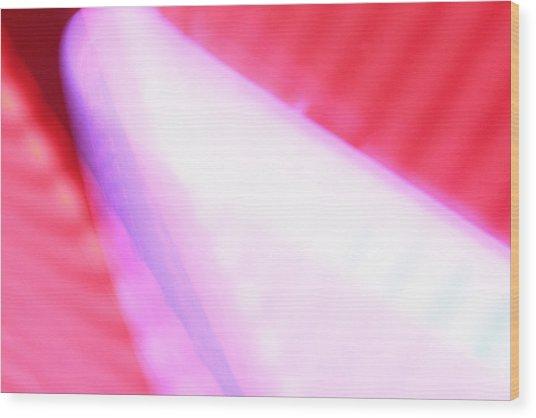 Pink Neon Wood Print by Will Czarnik