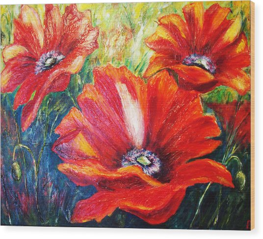 Poppy Flowers In Bloom Wood Print