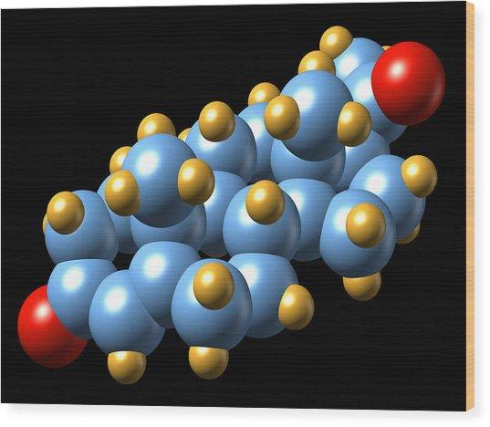 Progesterone Hormone, Molecular Model Wood Print by Dr Mark J. Winter