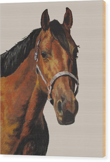 Quarter Horse Wood Print by Ann Marie Chaffin