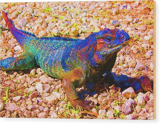 Rainbow Lizard Wood Print by Katheryn Napier