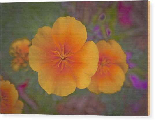 Rikis Poppy 3 Wood Print