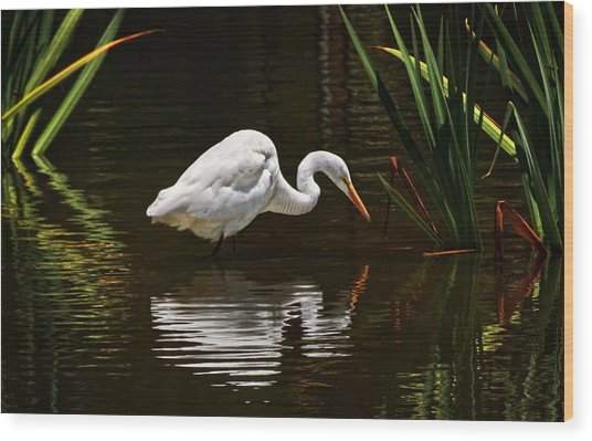 Ripples On The Pond  Wood Print by Donna Pagakis