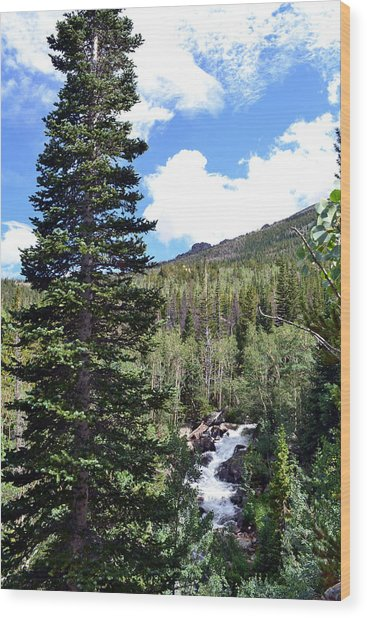 Rocky Mountain National Park2 Wood Print