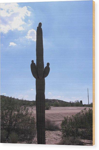Saguaro Cactus Wood Print by David Killian