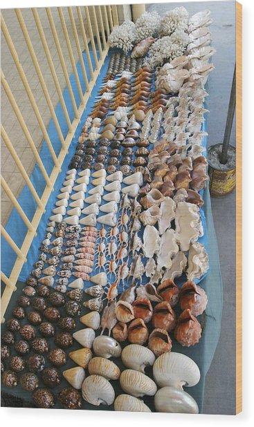 Seashell Trade Wood Print by Alexis Rosenfeld